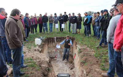 Improving soil health to maximise WUE in the Upper North (UNF216G)