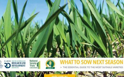 SA Crop Variety Sowing Guides (S414)