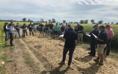 MacKillop Farm Management Group Annual Trial Results book (MFM118)
