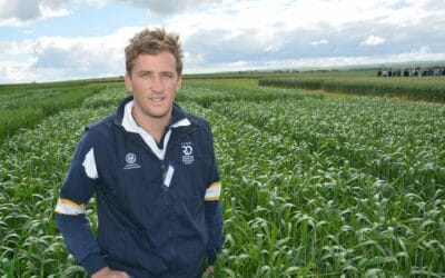 A new approach to grass weed control for durum wheat (DG1202)